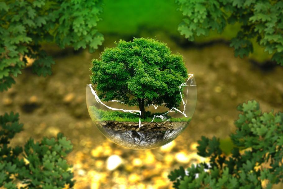 Baum in Glaskugel