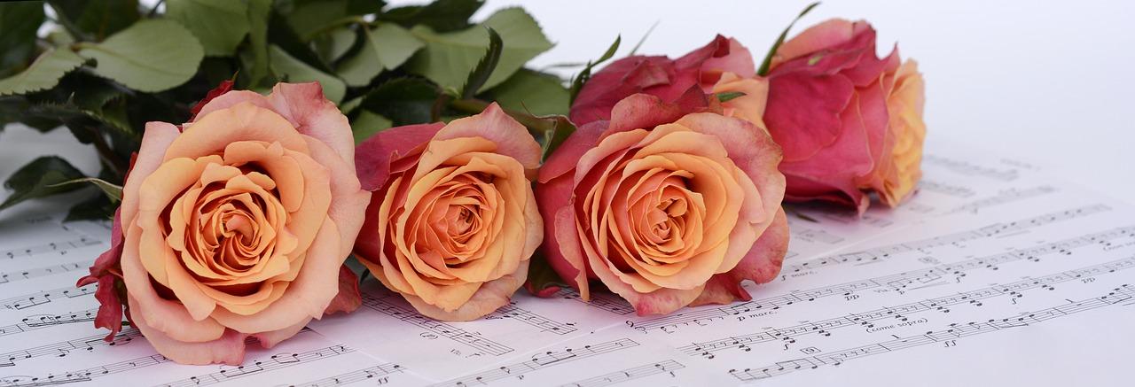 Rosen auf Noten